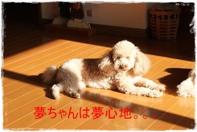 2011_1115_094953-IMG_4812.jpg