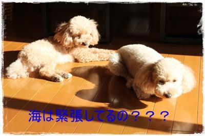 2011_1115_095001-IMG_4813.jpg