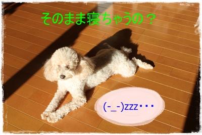 2011_1116_091420-IMG_4834.jpg