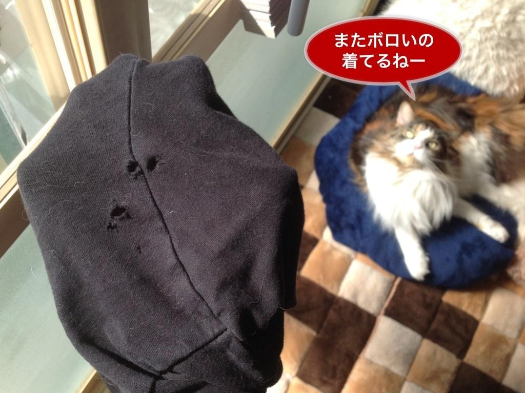 image_20130311071019.jpg