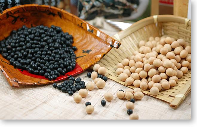 黒千石と有機丸大豆