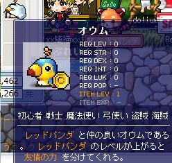 Maple0012_20100328104826.jpg