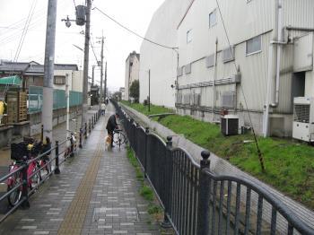 長瀬八尾2203_11