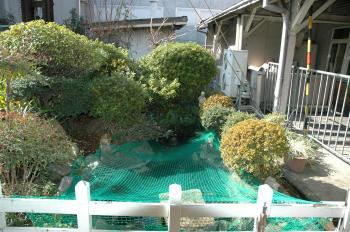 汐見橋駅220130_08