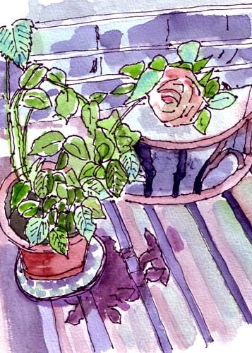 ベンチと薔薇