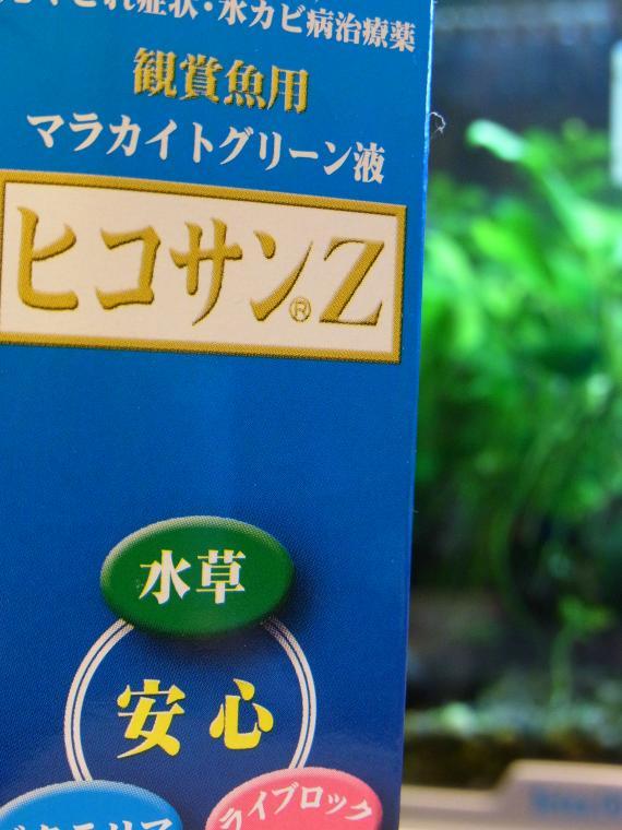 018_convert_20130125192209.jpg