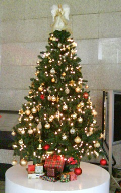 xmas tree amoda bldg09