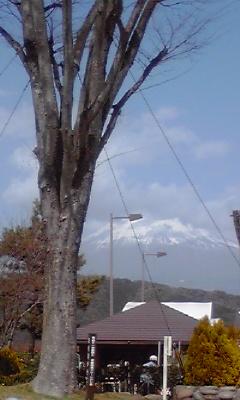 富士山100321_1316~01