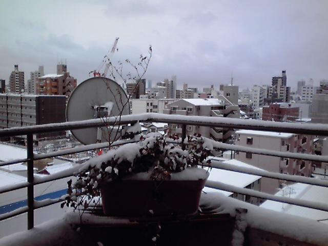 雪2、KC3T0077