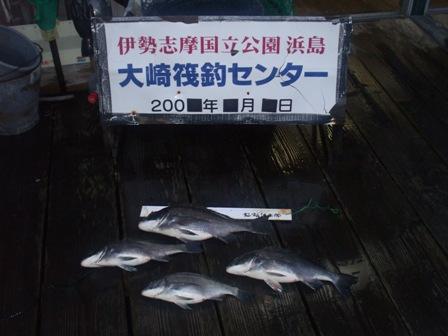 看板前釣果