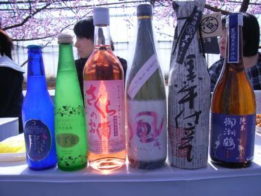 sake100228_convert_20100301210236.jpg