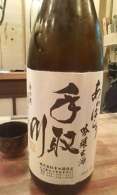 tedorigawa100227.jpg