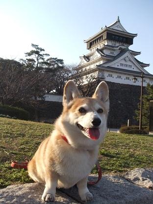 小倉城と姫