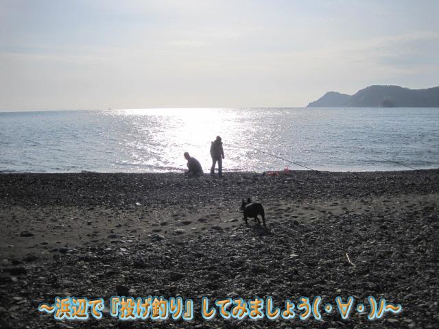 浜辺で投げ釣り