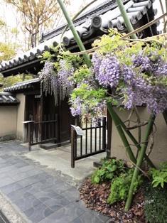fuji20110504-1.jpg
