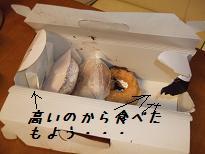 2008_120610004.jpg