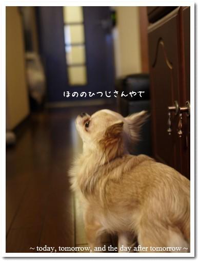2010-01-23-02.jpg