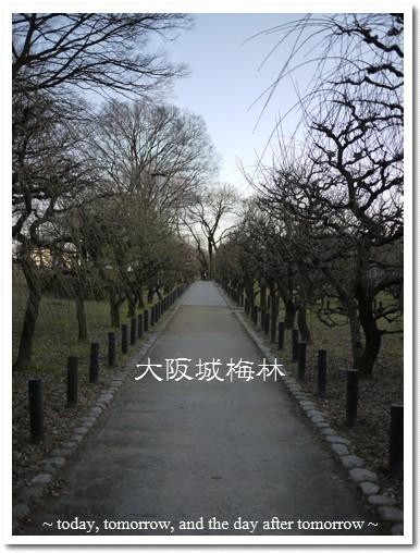 2010-01-24-13.jpg