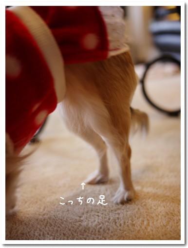 2010-01-26-02.jpg