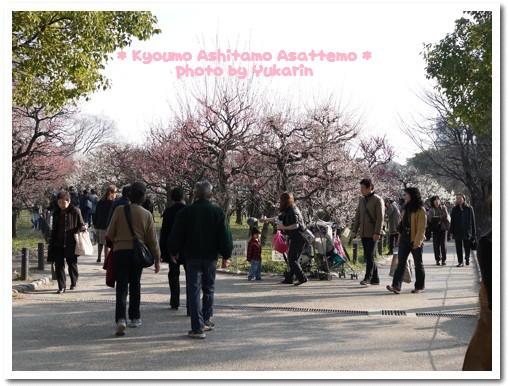 2010-02-24-01.jpg