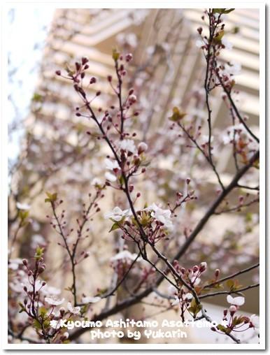 2010-03-12-09.jpg