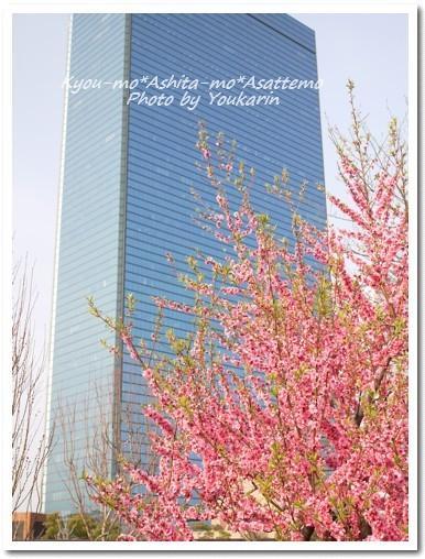 2010-03-23-05.jpg