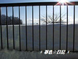 100109積雪