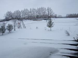 100303雪