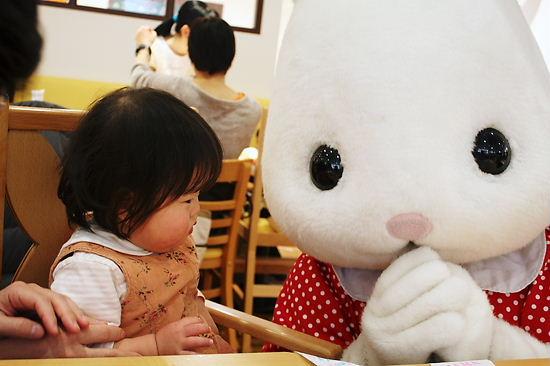 ウサギさんとご対面
