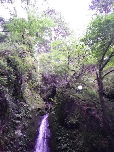 縮小400滝オーブ