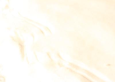 2011012204.jpg
