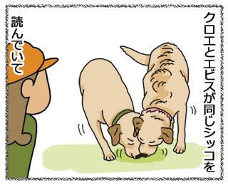 羊の国のラブラドール絵日記1