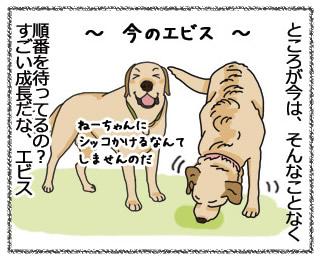 羊の国のラブラドール絵日記4