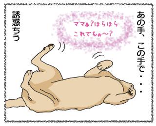 羊の国のラブラドール絵日記NEW!!12月20日2