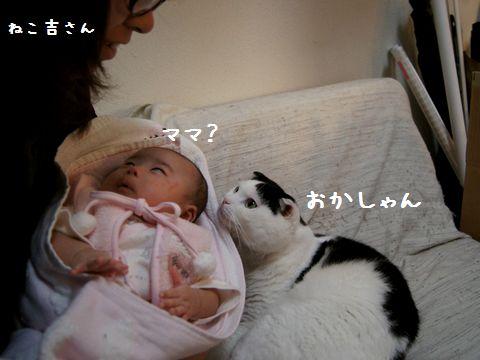あたちのママ?