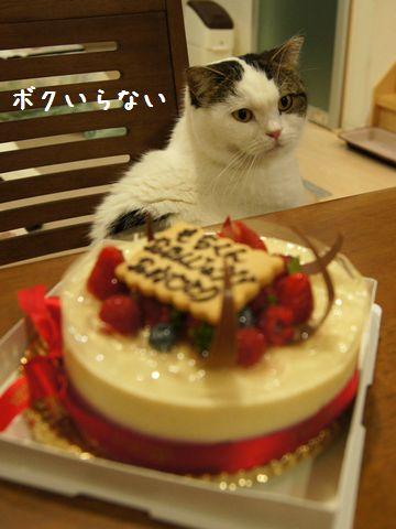 もちとケーキ