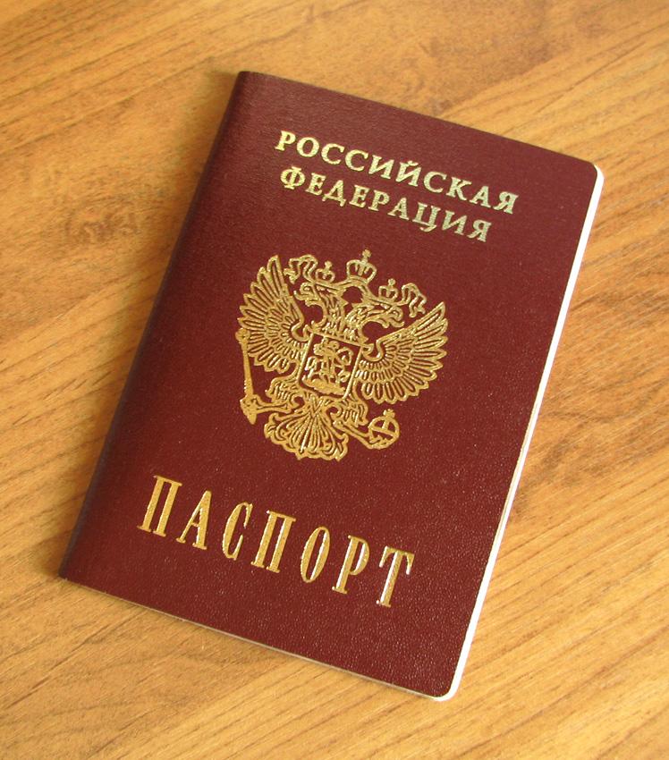 国内パスポート