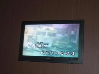 CIMG6154_20110309094536.jpg
