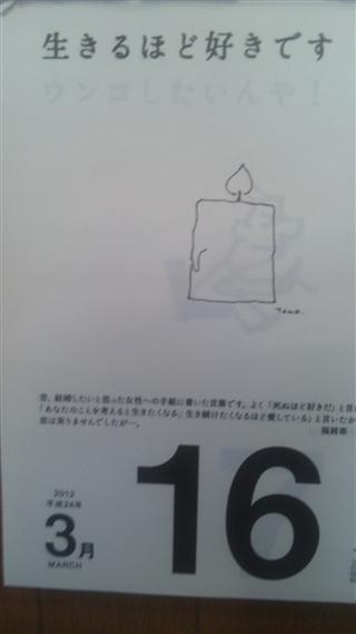 SH316_R.jpg