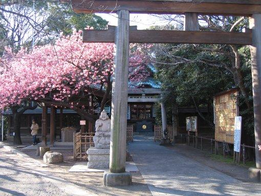 和やかな神社