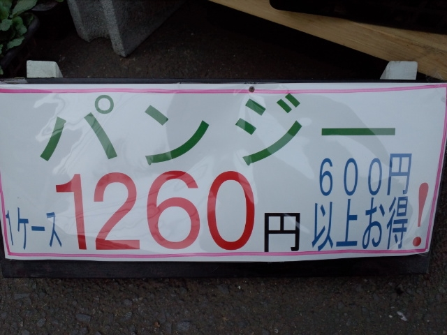 1102-20.jpg