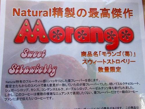 ブラジルモランゴ (3)