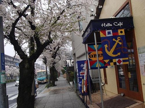 ハローカフェでランチ (1)