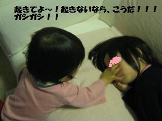 20110425_2.jpg