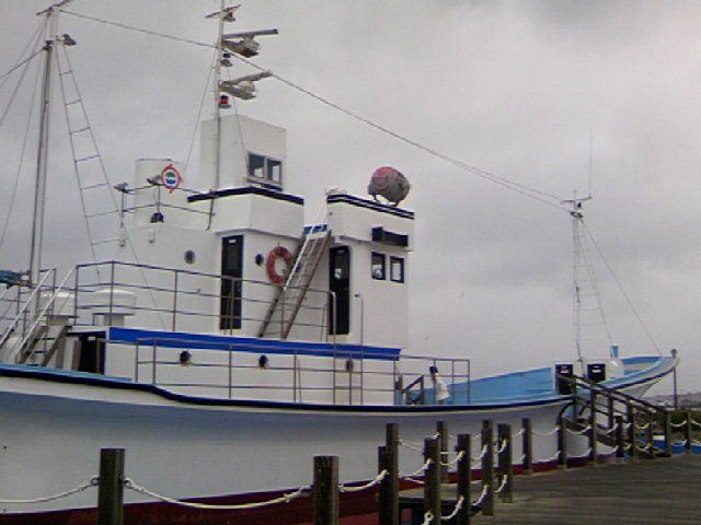 TS3B1622.JPG