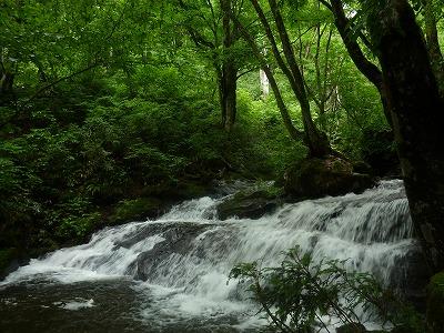 雨上がりの後の滝