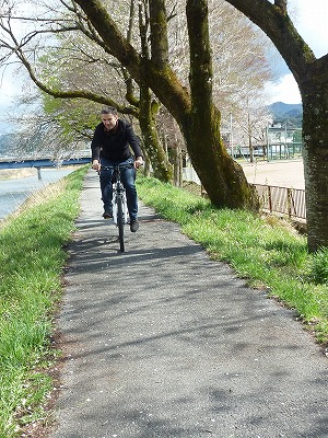 桜並木の道をサイクリング
