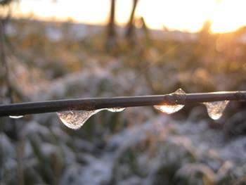 凍てつく朝ー1