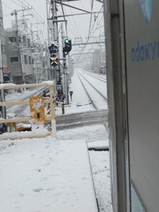 雪の中・・