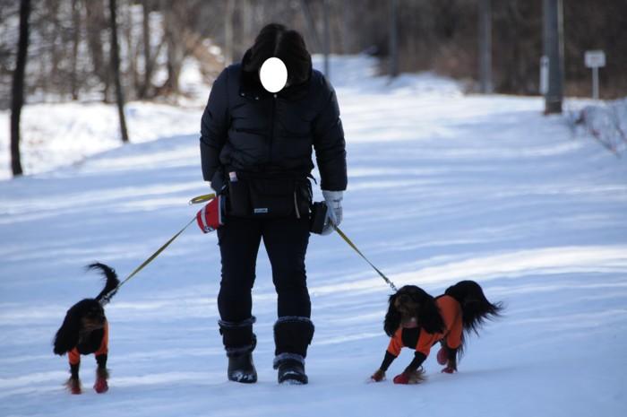 7043雪の中散歩。